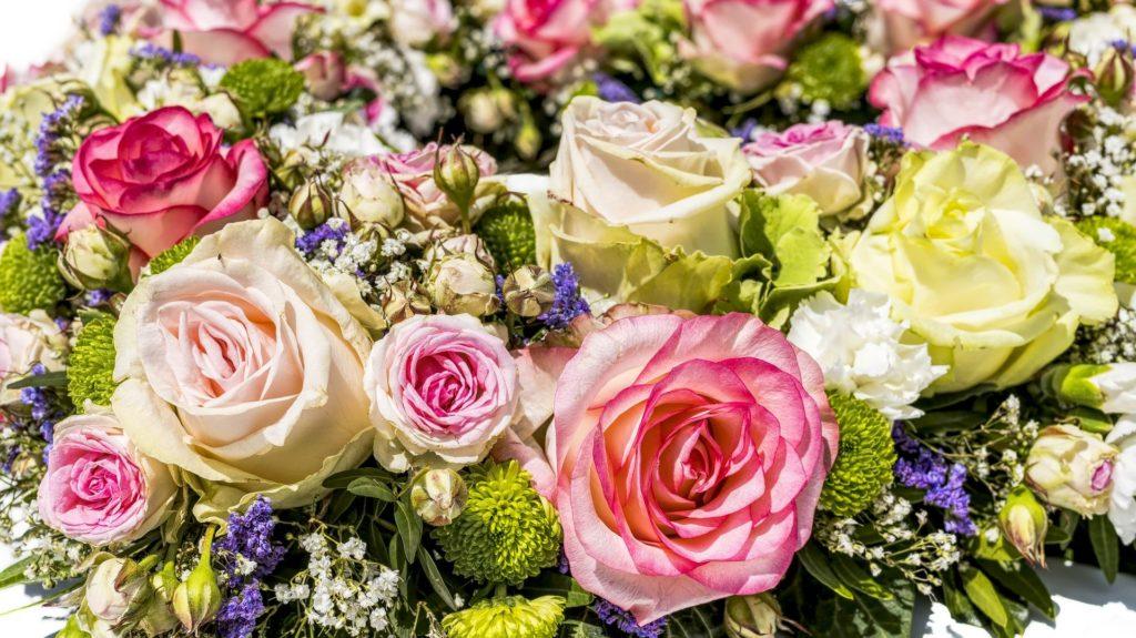 Bunte Blumen pastelle Farben