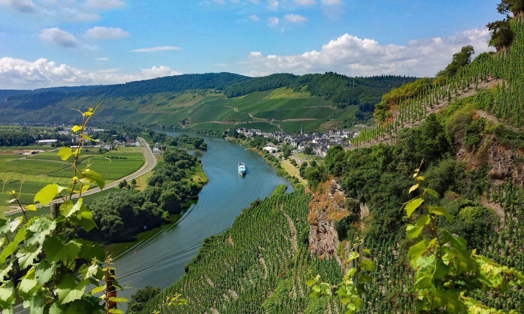 Busreise Blick auf Mosel Fluss Weinberge und Hügel Landschaft