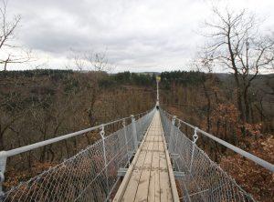 Betriebsausflug Firmenreise Hängeseilbrücke Geierlay Berge