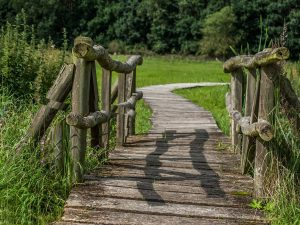 Firmenreisen Wandern Holzbrücke im Grünen