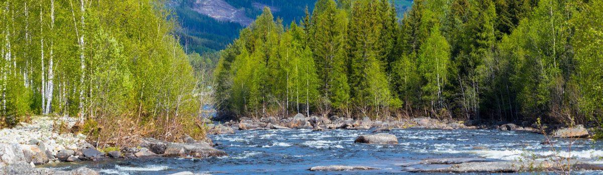Flacher Fluss in Skandinavien mit Steingeröll und Bergen im Hintergrund sonnig